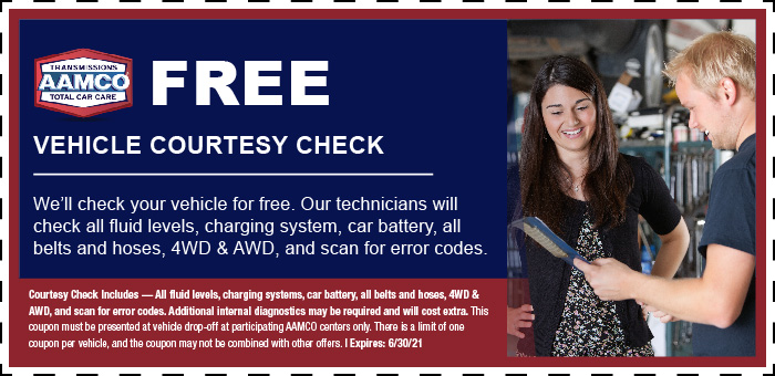 Image of vehicle courtesy check coupon with mechanic talking to customer
